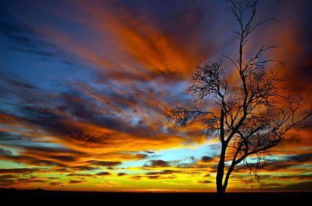 122732-12-australian-sunrise