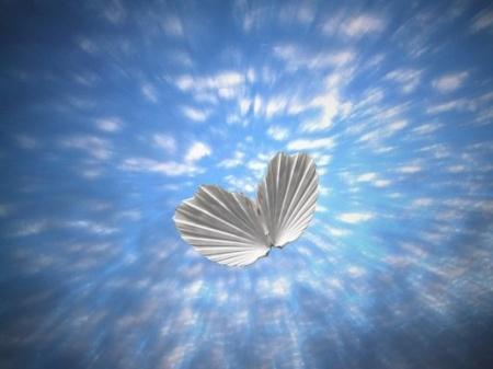 dreams sky